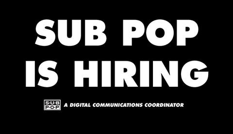 Sp hiring dcc