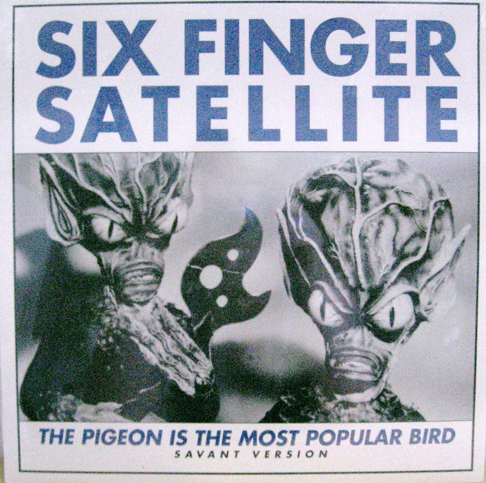 Six Finger Satellite The Pigeon Is The Most Popular Bird