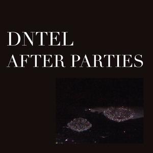 Dntel After Parties 1 And 2 Combo Sub Pop Mega Mart
