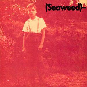 Seaweed bill