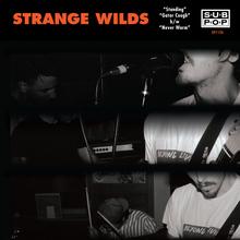 Strangewilds standing cover 2400 72