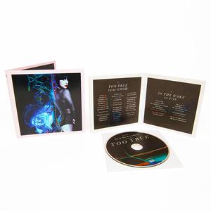 Dumdumgirls tootrue cd 01