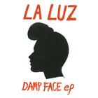 Laluz dampfaceep cover 1425x1425 300