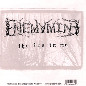 Enemymine theiceinme cover 900x900 300