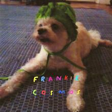 Frankiecosmos zentropy