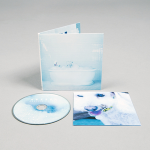 Frankiecosmos vessel cd