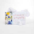 Frankiecosmos closeitquietly cd deluxe 04