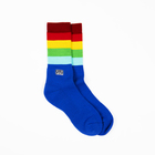 Subpop socks rainbow 02