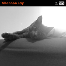 Shannonlay blue cover 3000