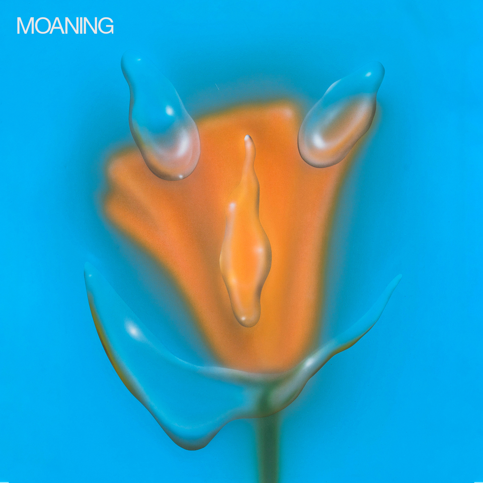 Moaning Uneasy Laughter Sub Pop Mega Mart