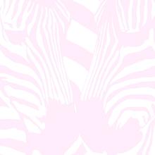 Yuno zebra 3000